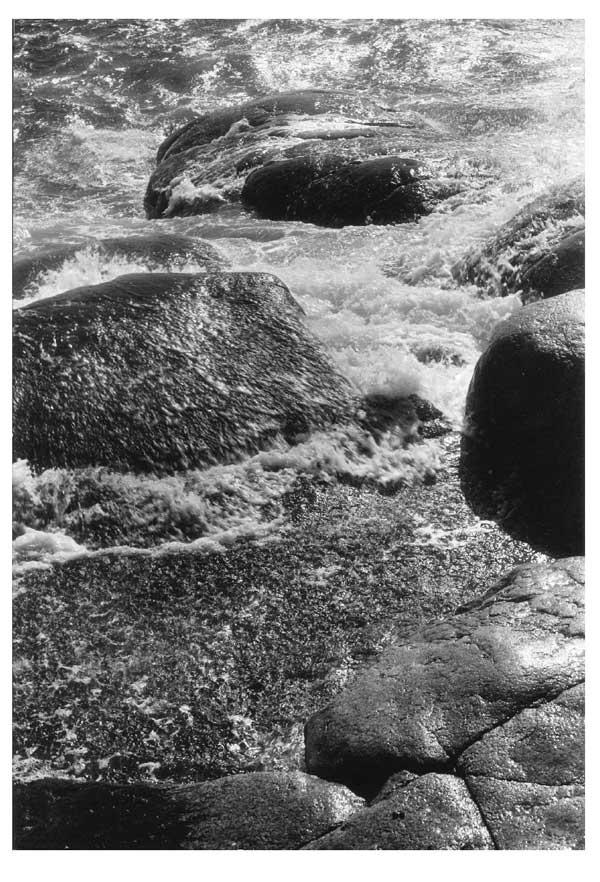 En havsvik Foto Beata Bergström