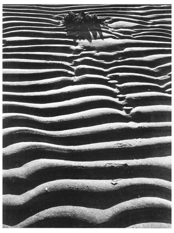 Sand Foto Beata Bergström