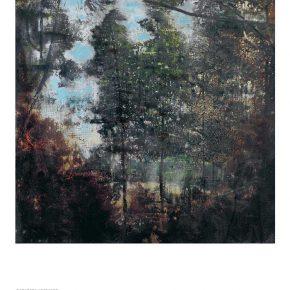 Skogen – civilisationens skugga. Frihetssymbol och nationalskatt
