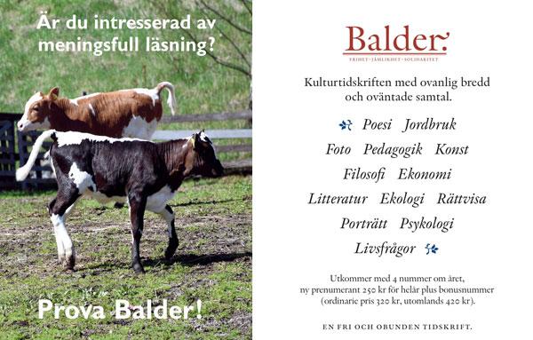 Information om Balder