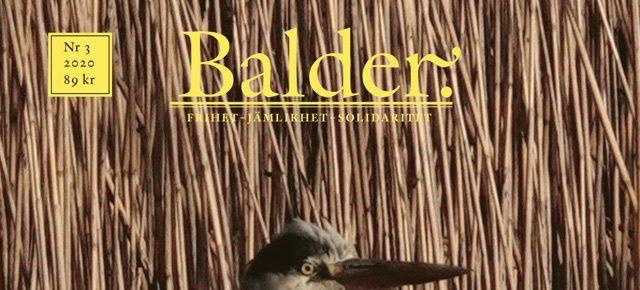 Balder 3/2020