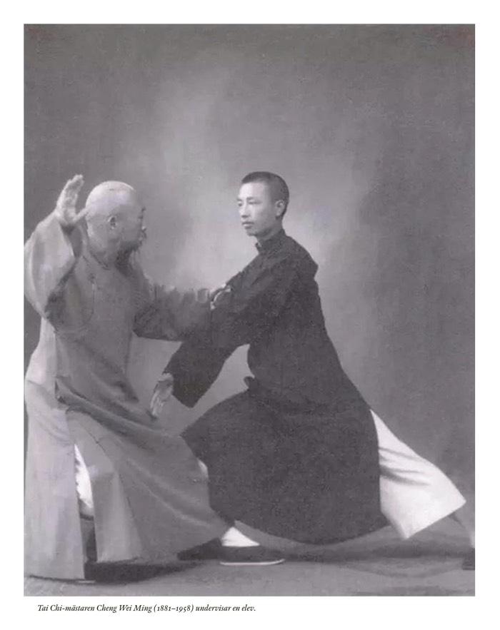 Tai Chi-mästaren Cheng Wei Ming