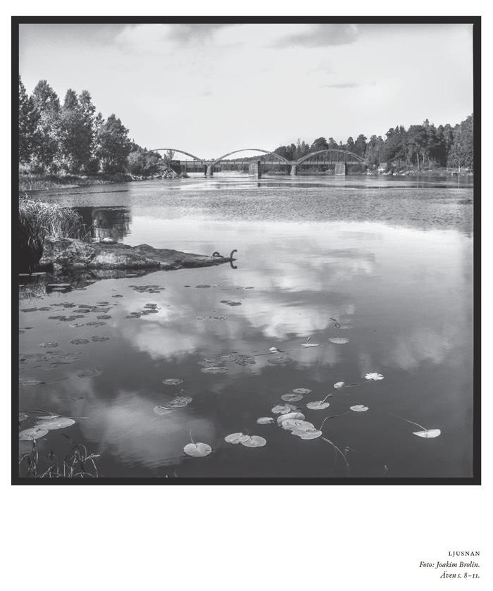 Ljusnan Foto: Joakim Brolin.